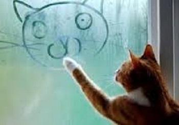 «Плачут» окна в квартире.